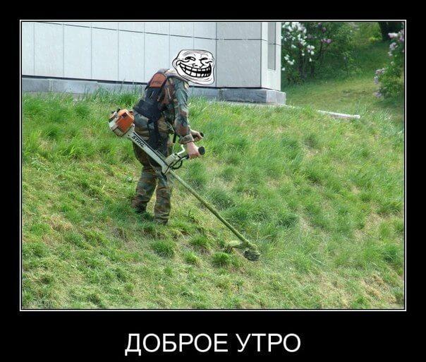 газонокосильщики