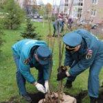 30 добрых дел: сотрудники МЧС России высадили деревья в рамках всероссийской экологической акции